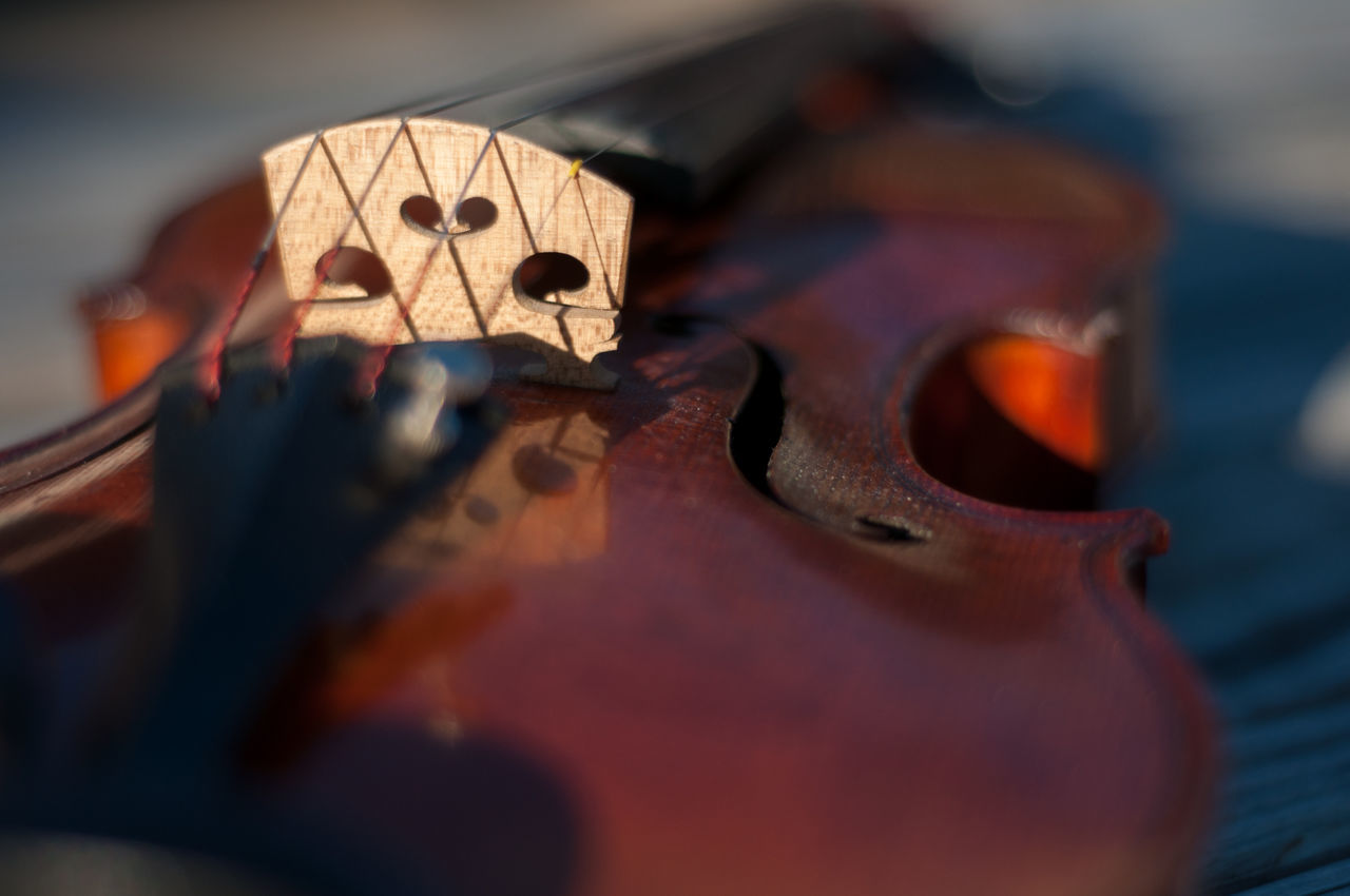 I started playing the violin in 6th grade as a part of a school orchestra program. I've had this particular instrument since 2002. The instrument is French made circa 1910-1920. I hope you enjoy these photos as much as I enjoy playing my beautiful violin! Aged Wood Arts Culture And Entertainment Bridge Depth Of Field Durham NC Front Side Hobbies Low Angle View Music Musical Instrument Natural Beauty Outdoors Relfection Sunlight Tail Piece Violin