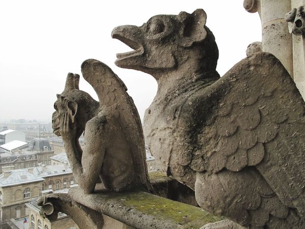París Notre-Dame Notre Dame De Paris Notre Dame Cathedral Gárgola Gargoyles Amazing Architecture Amazing View Best EyeEm Shot Best Eyem Photo City Of Love Paris Love It Enjoying Life France Amazing City Incredible Best Eyeem Photo Europe EyeEm Best Shots EyeEmBestPics Eyem Best Shots