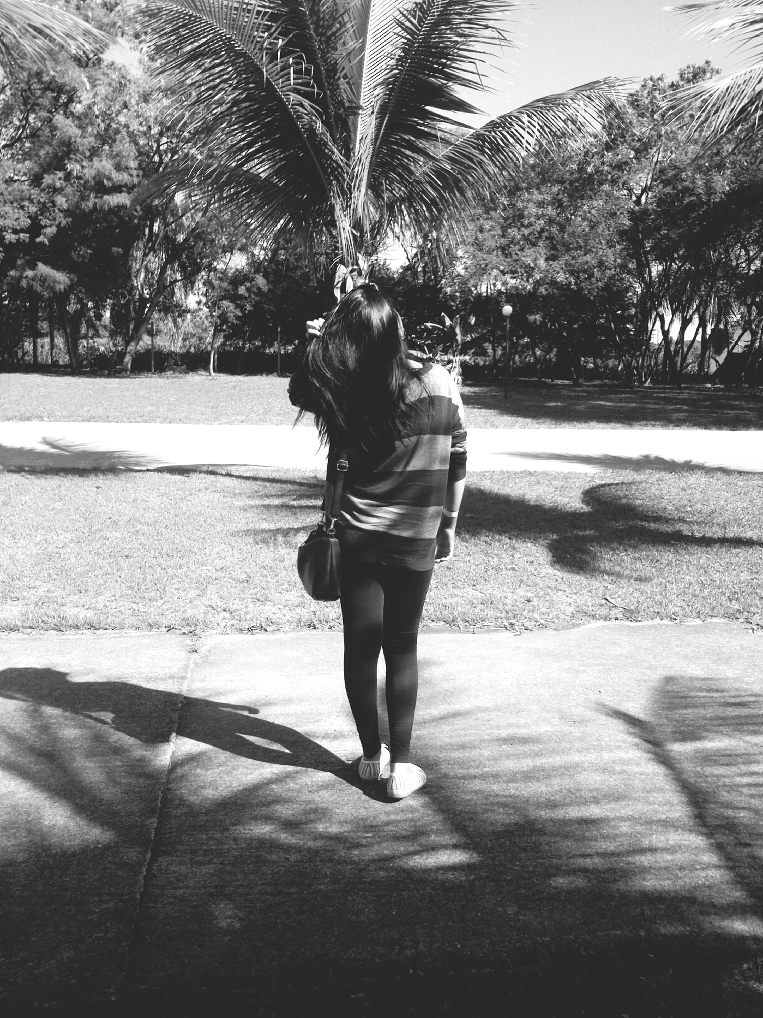 full length, lifestyles, casual clothing, leisure activity, rear view, tree, walking, childhood, street, sunlight, person, road, shadow, girls, standing, park - man made space, elementary age, day