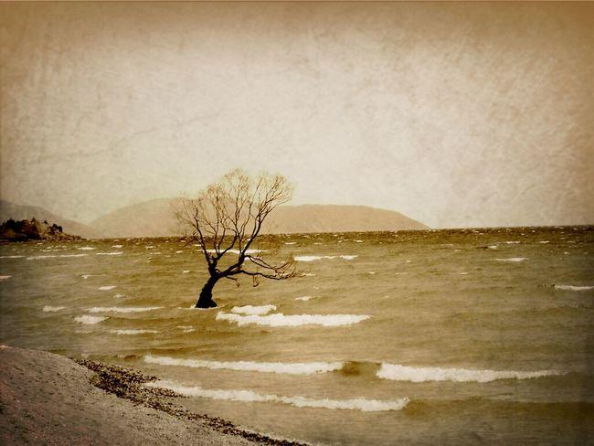 lake south island nz