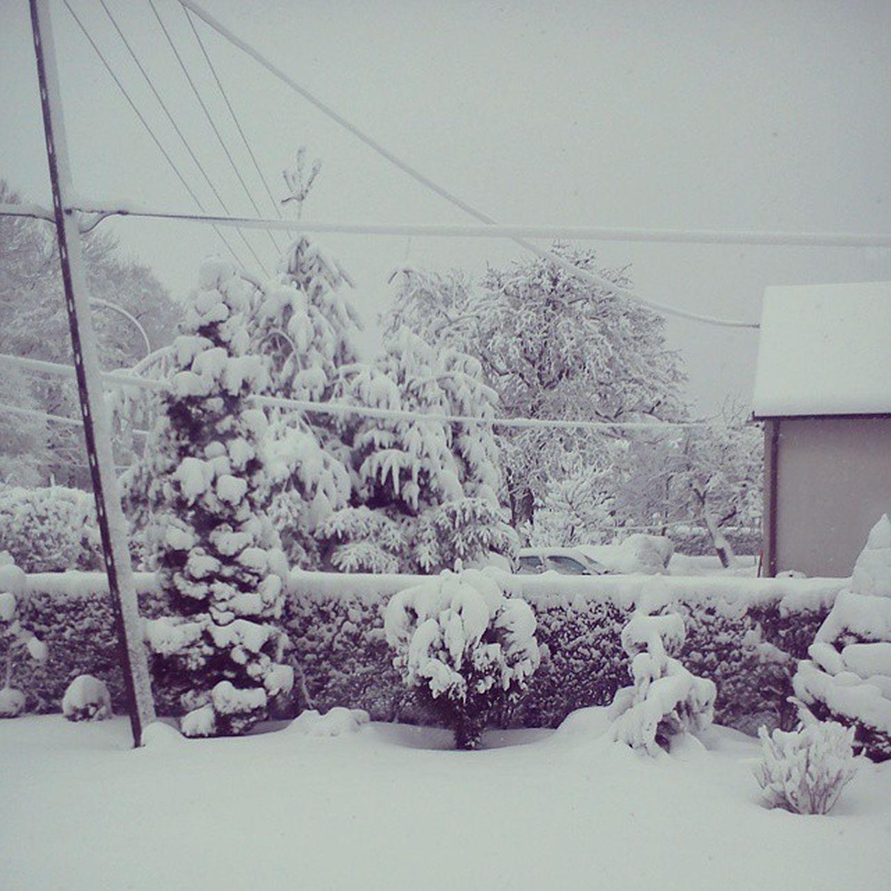 śnieg Zasypało Nas Ferie Ulepimy Bałwana Huraa