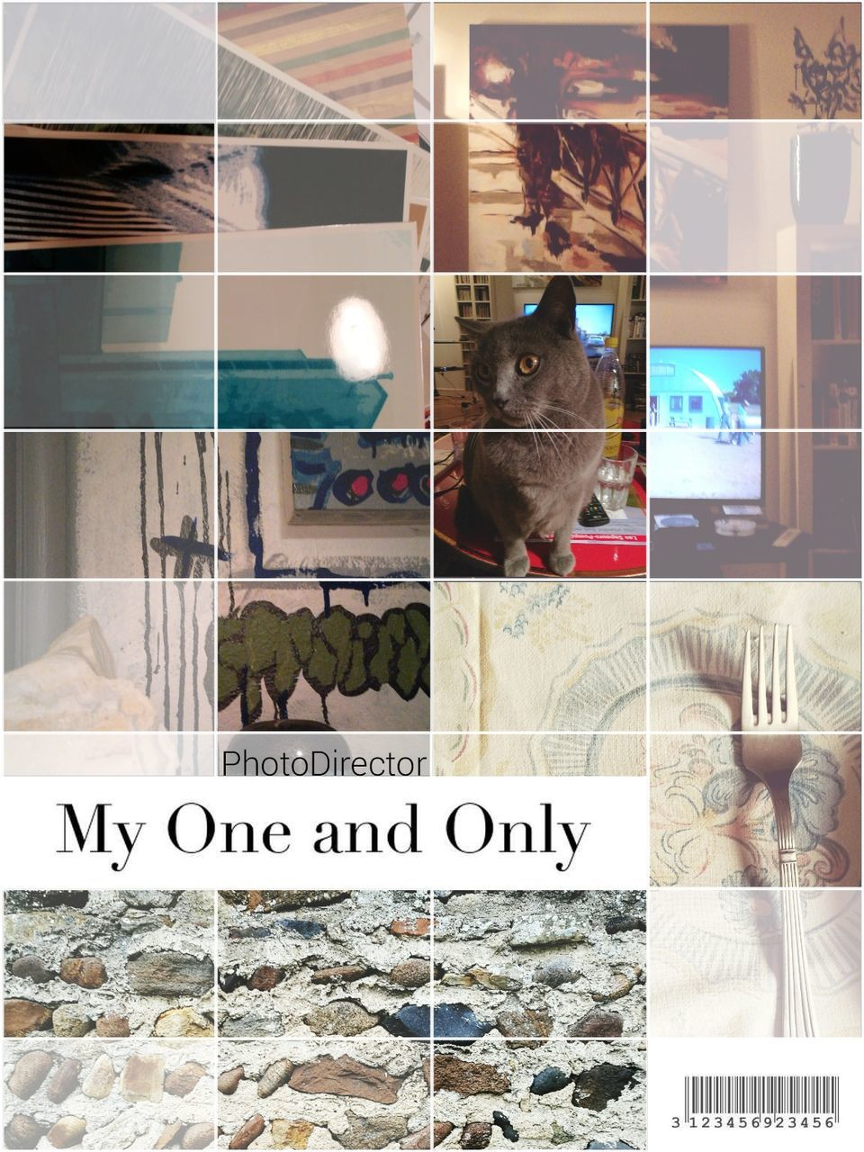domestic cat, pets, animal themes, domestic animals, cat, text, feline, one animal, no people, indoors, mammal, collage, communication, day, close-up