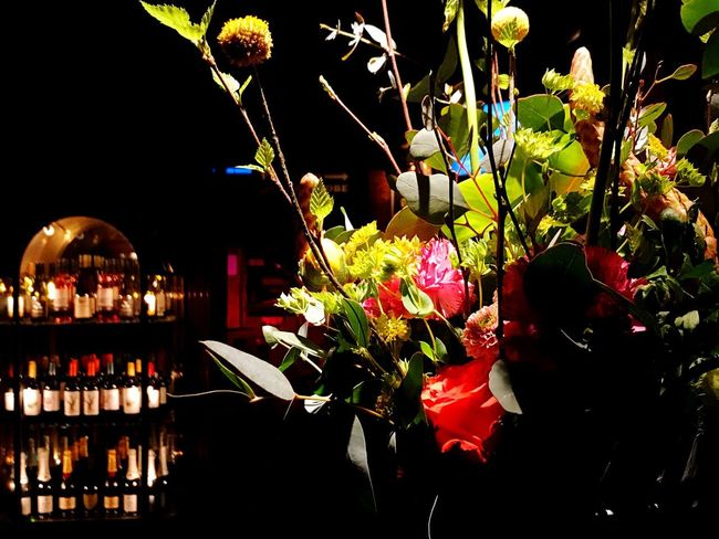 Flower Night Fragility No People Freshness Indoors  Beauty In Nature