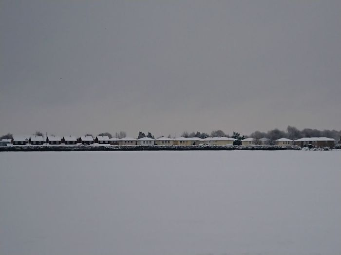 Hereford .... Cold Temperature Tranquility Nature Beauty In Nature Outdoors Snow Winter