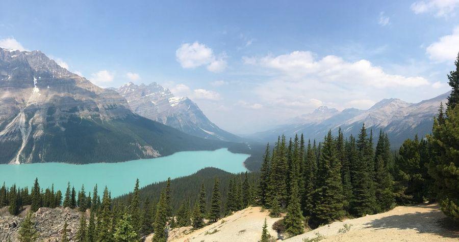 Canada 🇨🇦 Mountain Nature Beauty In Nature Landscape Sky Peak Tree Day Outdoors Mountain Range Scenery