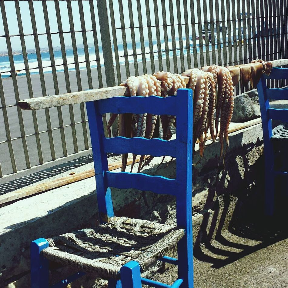 Beautiful stock photos of octopus, Animal Themes, Beach, Blue, Chair