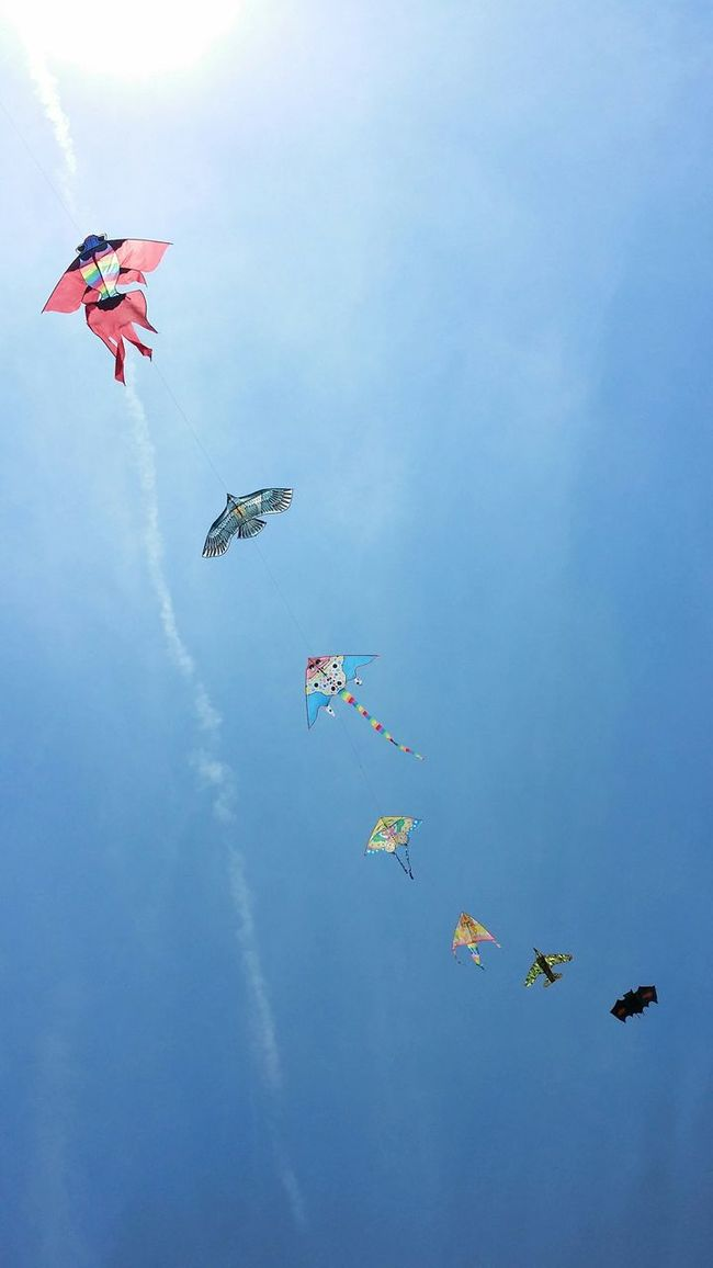 Flying away...... Summer2015 Kites InTheSky Streemzoofamily