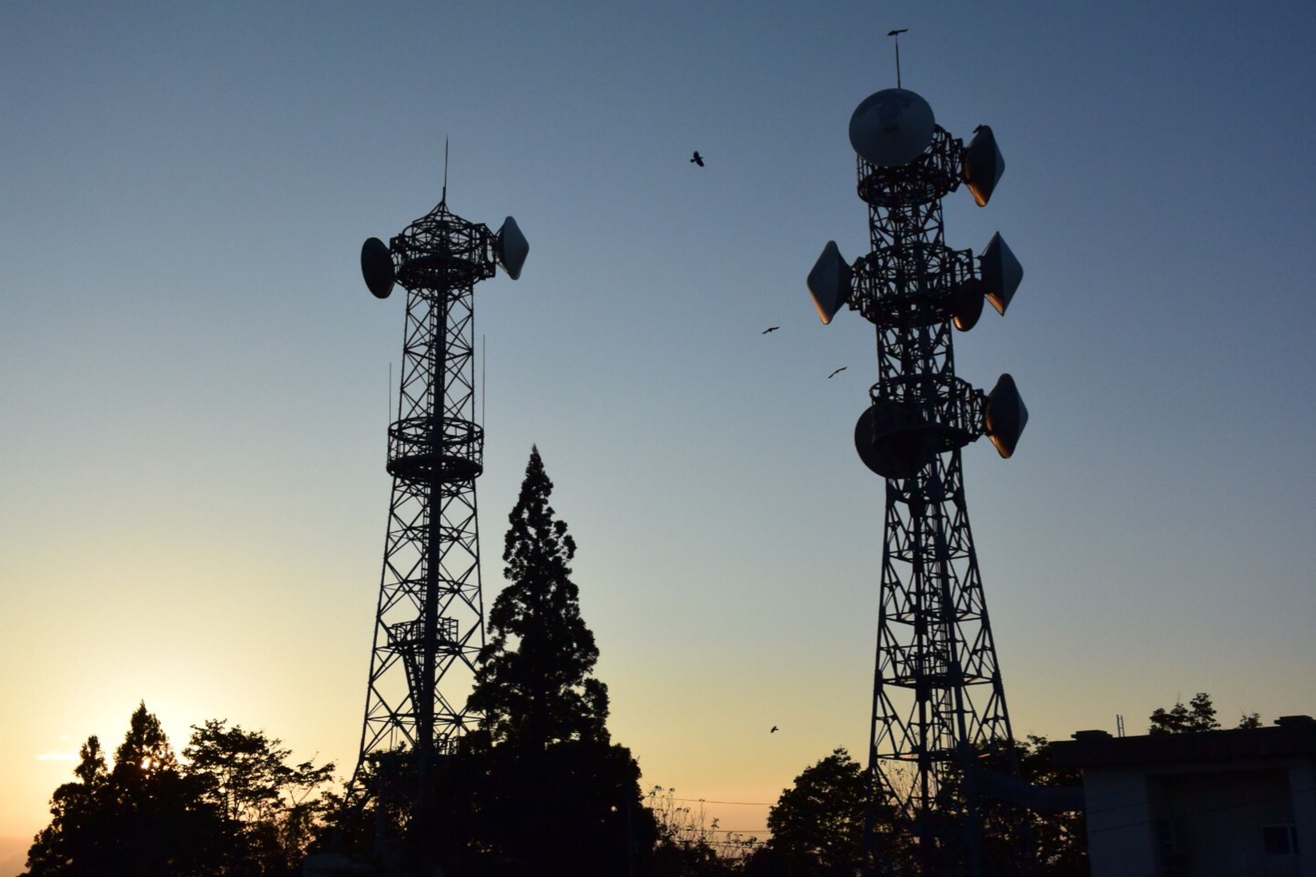 low angle view, silhouette, clear sky, sky, tall - high, tree, technology, sunset, copy space, built structure, communications tower, blue, tower, dusk, lighting equipment, outdoors, street light, electricity, communication, no people