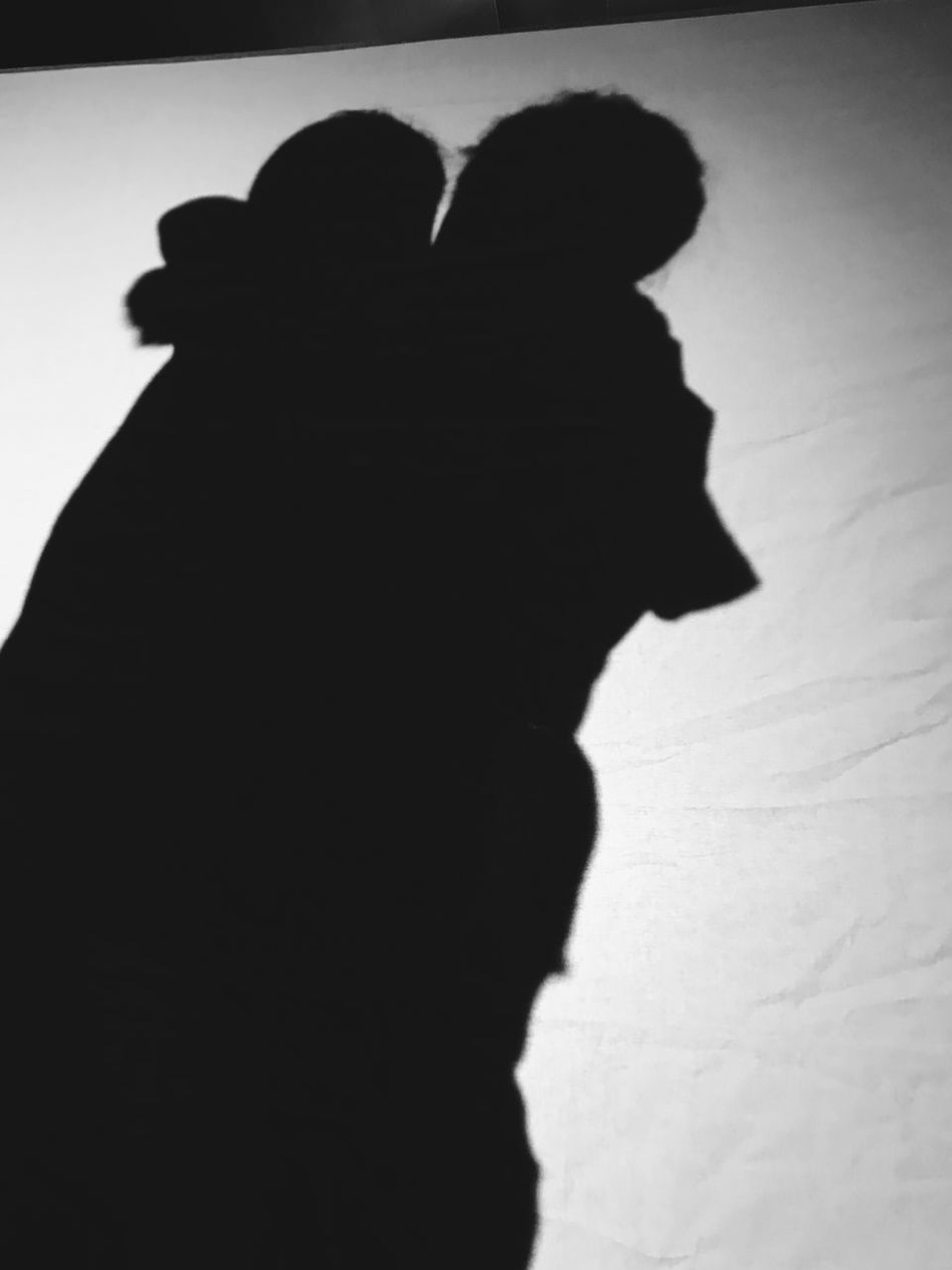 Silhouette Love Real People Two People Togetherness Men Human Hand Shadow Leisure Activity Women Bonding Indoors  Lifestyles Day Close-up Sky People