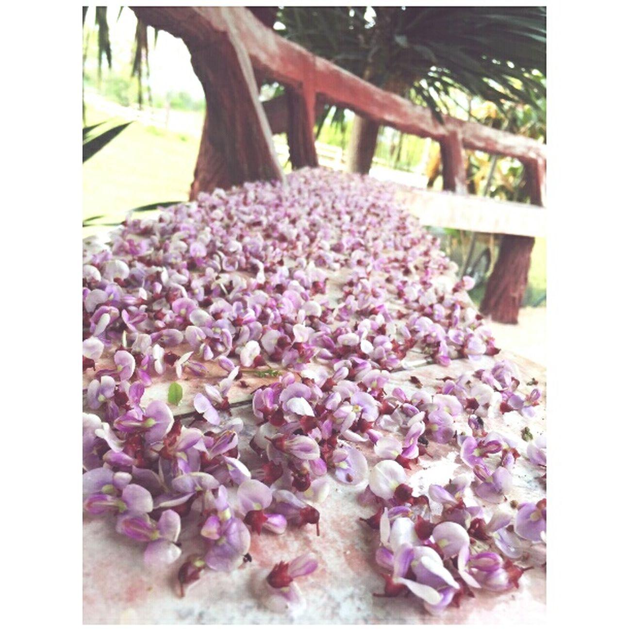 มันไม่มีทางที่โรยไปด้วยดอกไม้ได้ตลอดหรอก..