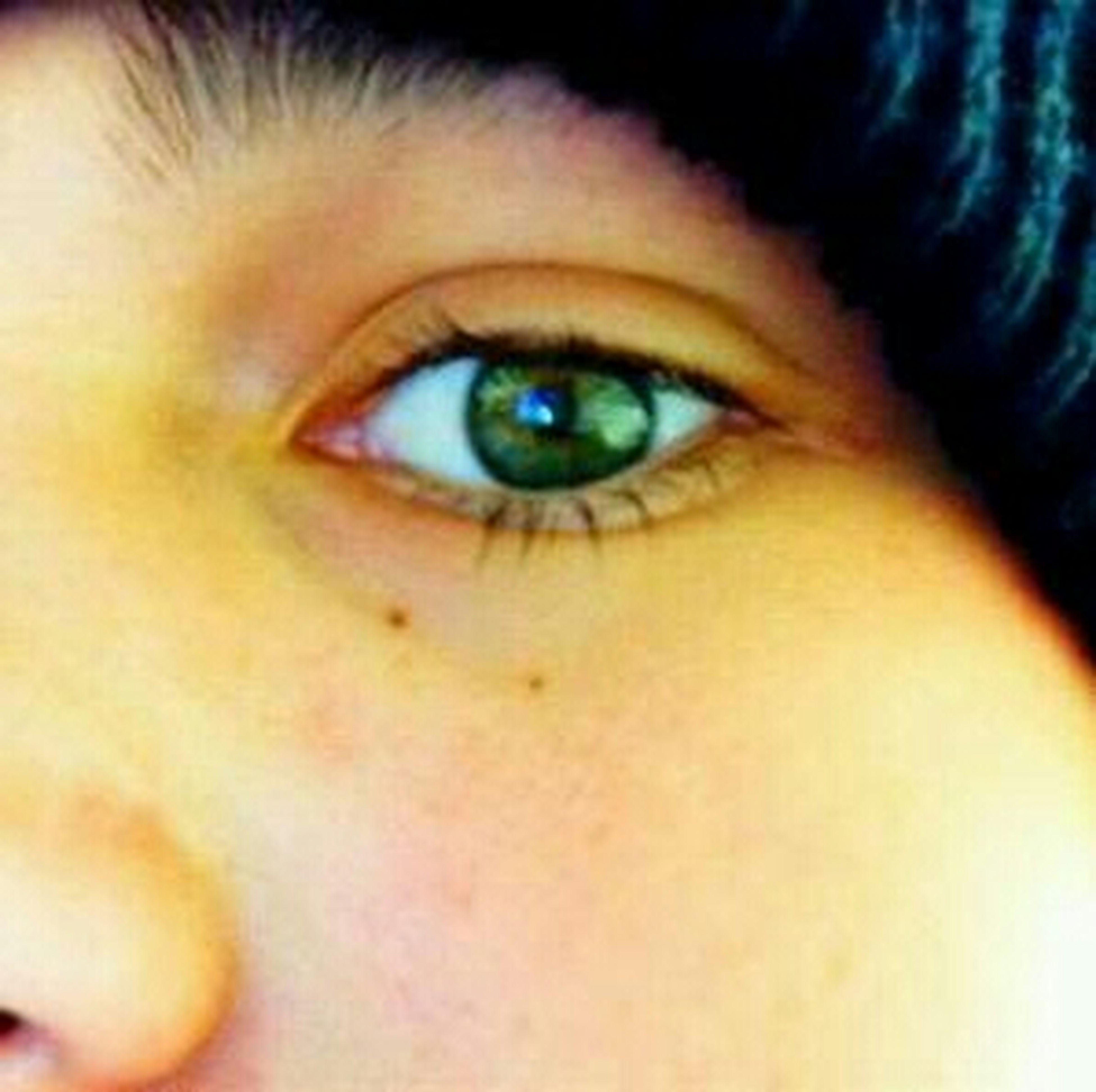 human eye, looking at camera, close-up, eyelash, portrait, eyesight, human face, sensory perception, lifestyles, part of, headshot, iris - eye, indoors, extreme close-up, eyeball, staring, extreme close up