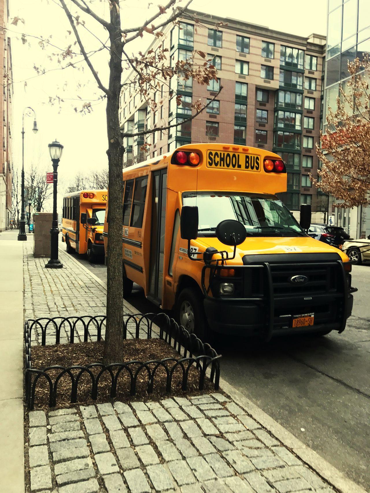 Transportation American Bus City Street Mode Of Transport City Life School New York City