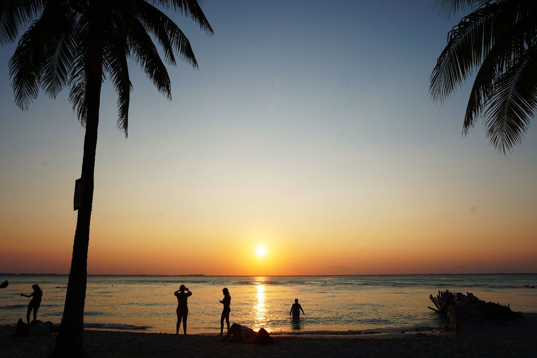 2016 Beach Beauty In Nature Happiness Isla Mujeres Mexico Nature Palm Tree People Relaxation Sand Sea Silhouette Sky Sun Sunlight Sunset Vacations Water イスラムヘーレス サンセット ビーチ メキシコ ヤシの木 海