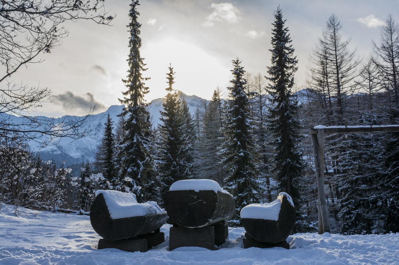 Bestoftheday Colors EyeEm Best Shots EyeEm Nature Lover Madesimo Nikon Nikonphotography Snow Sun Winter