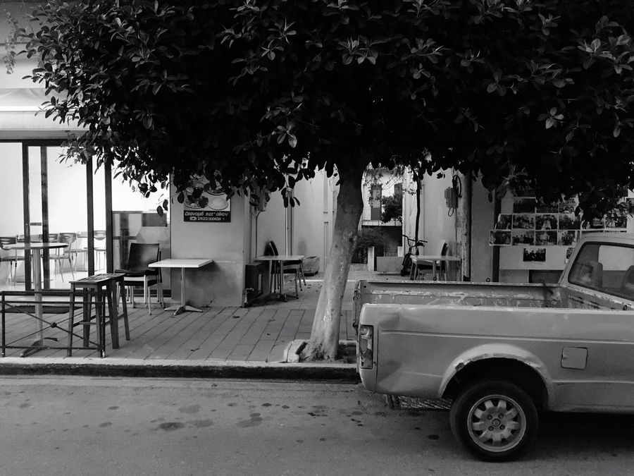 The car under the tree Tree Mode Of Transport Land Vehicle No People Outdoors Day Car Big Tree Big Car Calm Streets Sound Of Life South Warm Evening