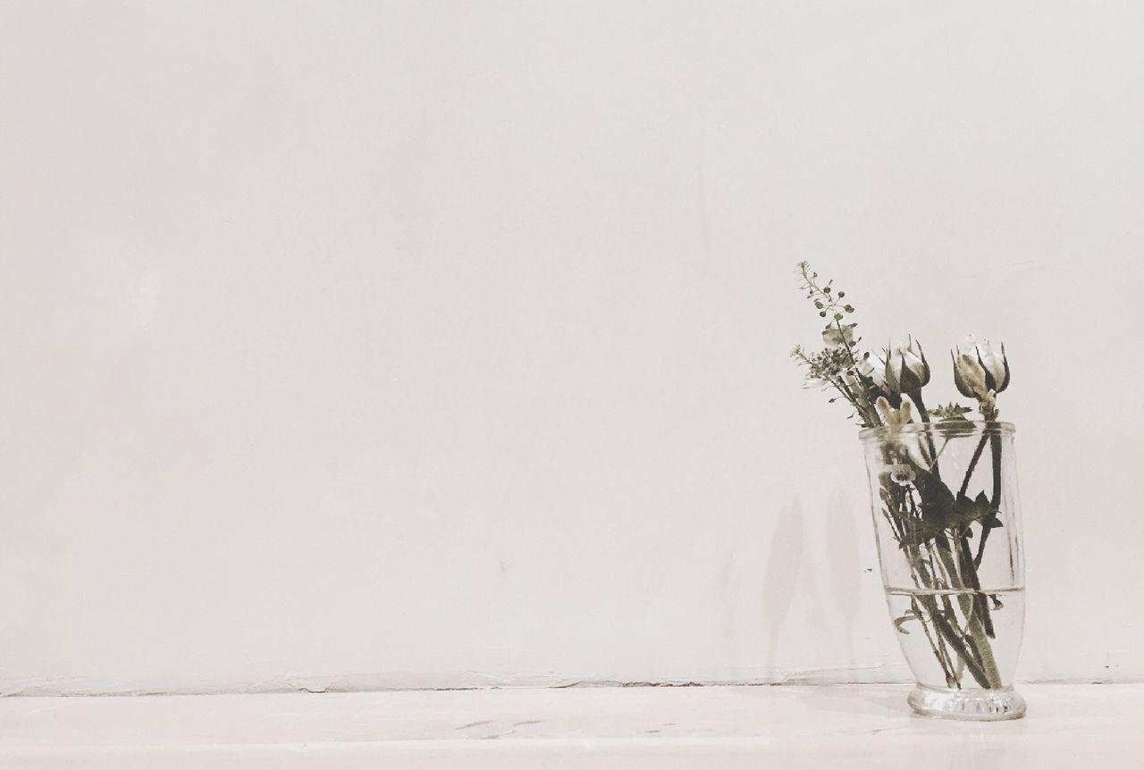 Flowers In Vase Against White Wall