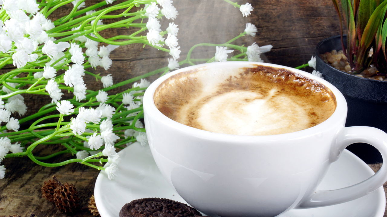 coffee cup, coffee - drink, drink, refreshment, food and drink, frothy drink, cup, freshness, no people, table, close-up, cappuccino, saucer, indoors, brown, froth art, leaf, flower, day, mocha