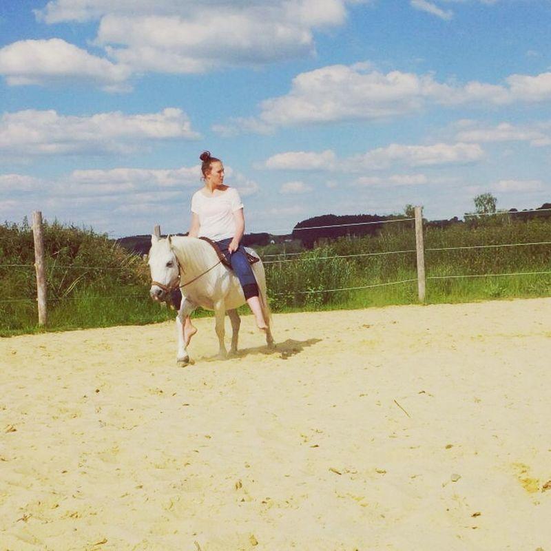 Hanging Out White Horse Enjoying Life That's Me