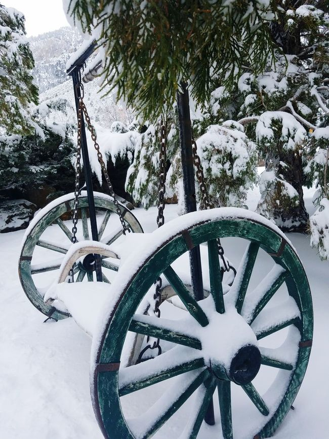 Winter Snow Tree No People Cold Temperature Wheel Outdoors DayTranquility Nature Spoke Mt Charleston Mountainscape Nevada, USA Snowing Bench Rocking Bench