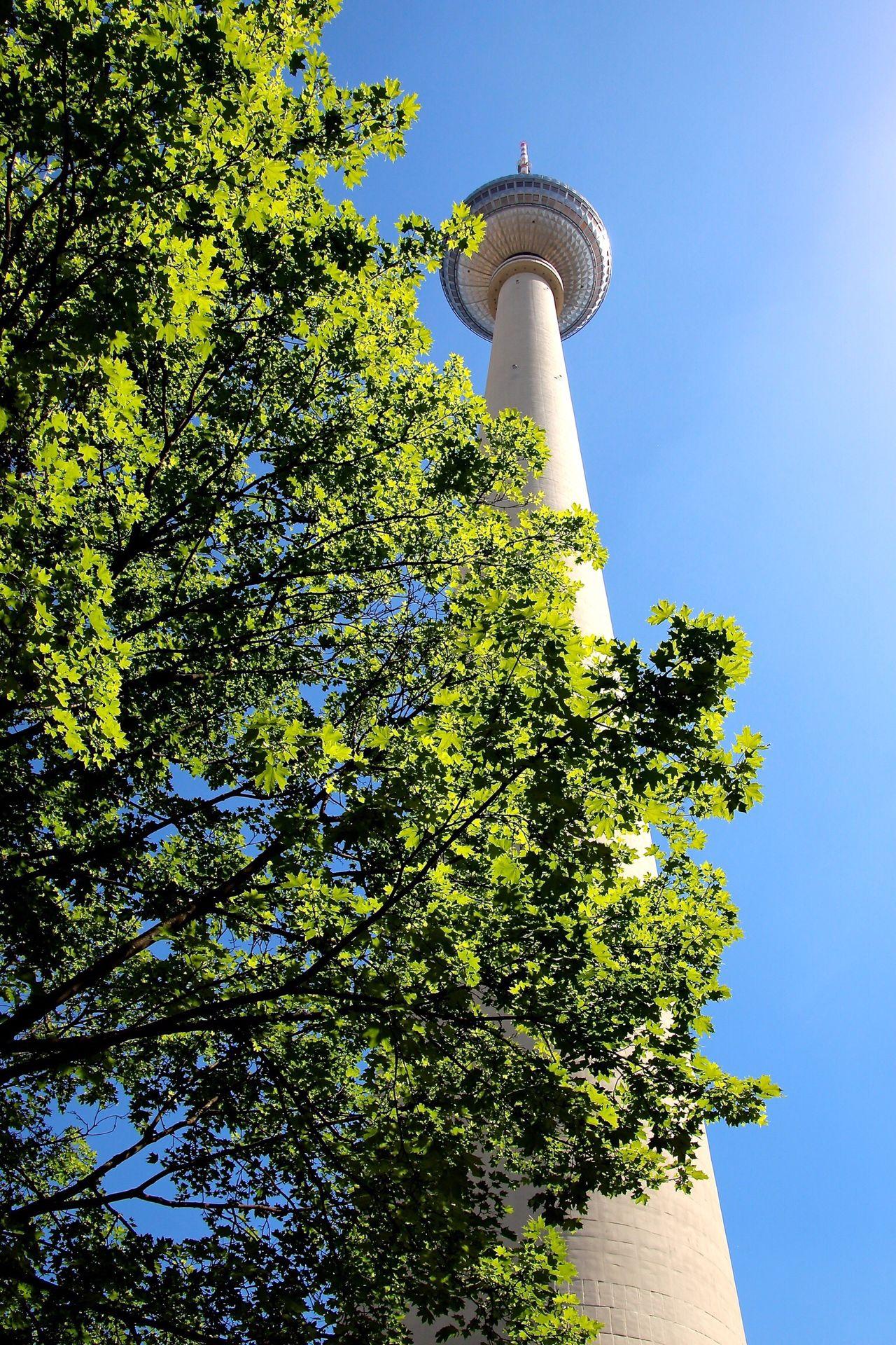 Berlin Berliner Ansichten TV Tower Sky Tree Tower Eye4photography  OpenEdit Tadaa Community AMPt_community EyeEm Best Edits Open Edit EyeEm Best Shots