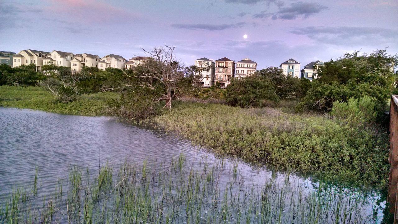 Marsh Island Water Sunset Foliage, Vegetation, Plants, Green, Leaves, Leafage, Undergrowth, Underbrush, Plant Life, Flora Houses