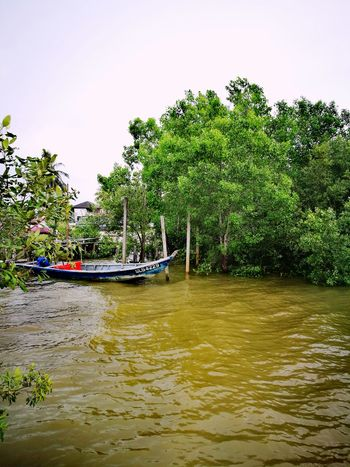 A fisherman's boat. Tree Water Beach Beauty In Nature Nature Sky Scenics Outdoors Perspectives On Nature