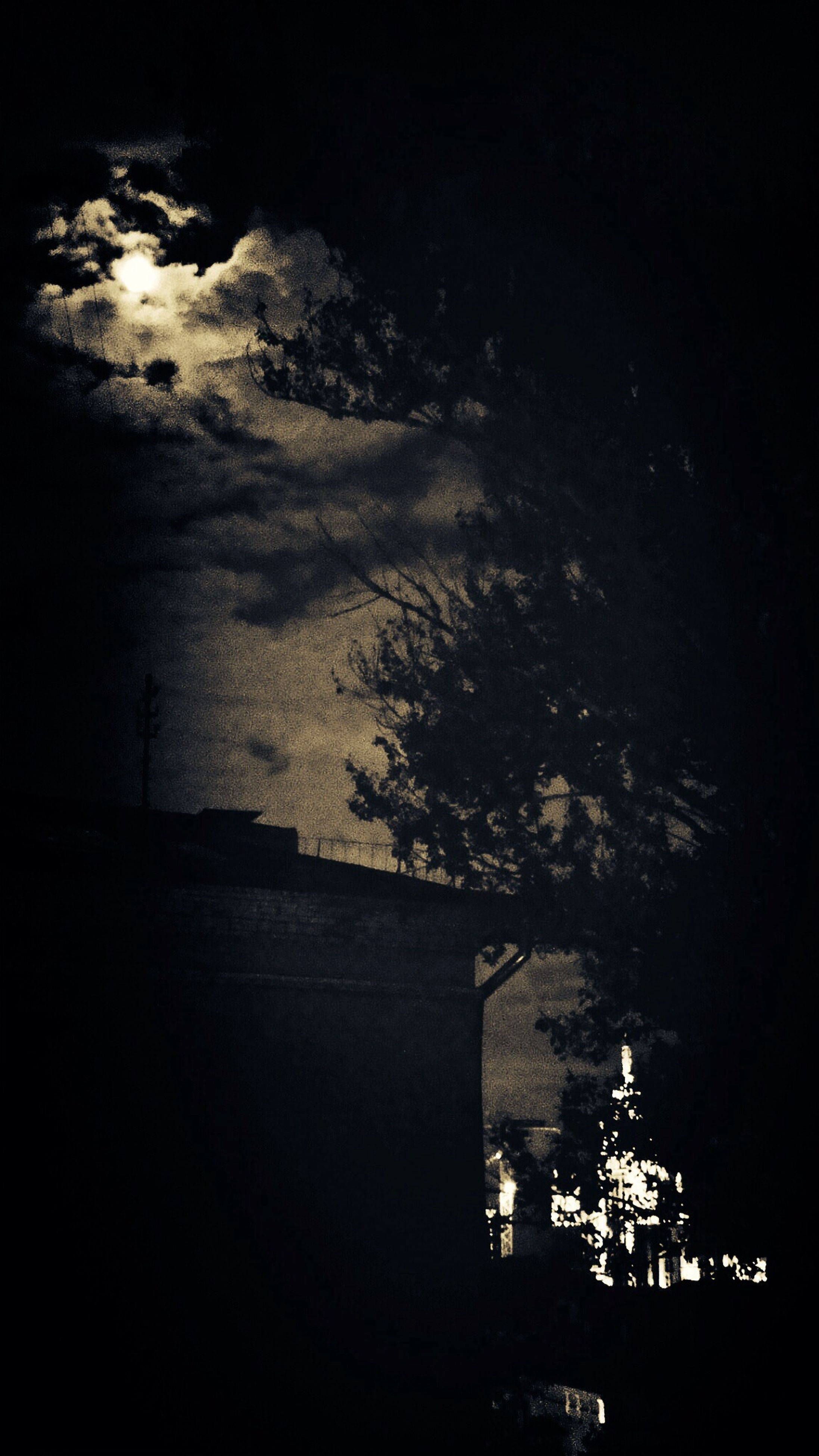 architecture, built structure, night, tree, building exterior, illuminated, sky, water, dark, city, bridge - man made structure, high angle view, river, outdoors, nature, no people, connection, dusk, silhouette, street