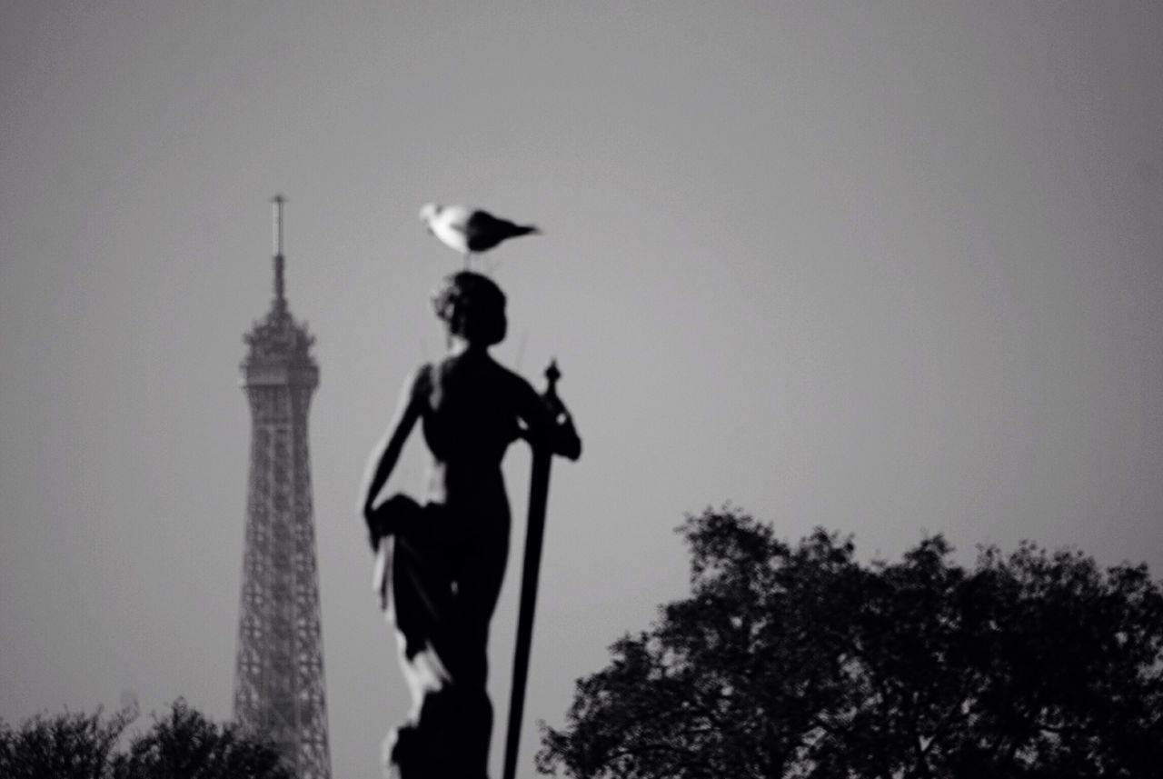 Once upon a time in the West vol. 4 Jardin Du Luxembourg Paris Hanging Out Taking Photos Blackandwhite Black & White Blackandwhite Photography Noir Et Blanc France Architecture Statue Seagull Eiffel Tower Tour Eiffel Traveling The Tourist Fresh On Eyeem  Fresh on Market April 2016 City Cityscapes