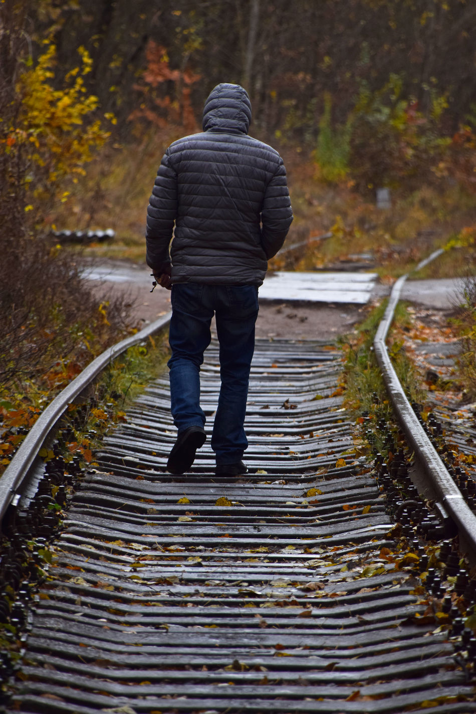 Man walking on thetrain tracks Autumn Beauty In Nature Day Forest Full Length Leaf Leisure Activity Men Metals Nature One Person Outdoors Rain Rainy Days Real People Steps The Secret Spaces The Way Forward Train Ride Train Tracks Walking