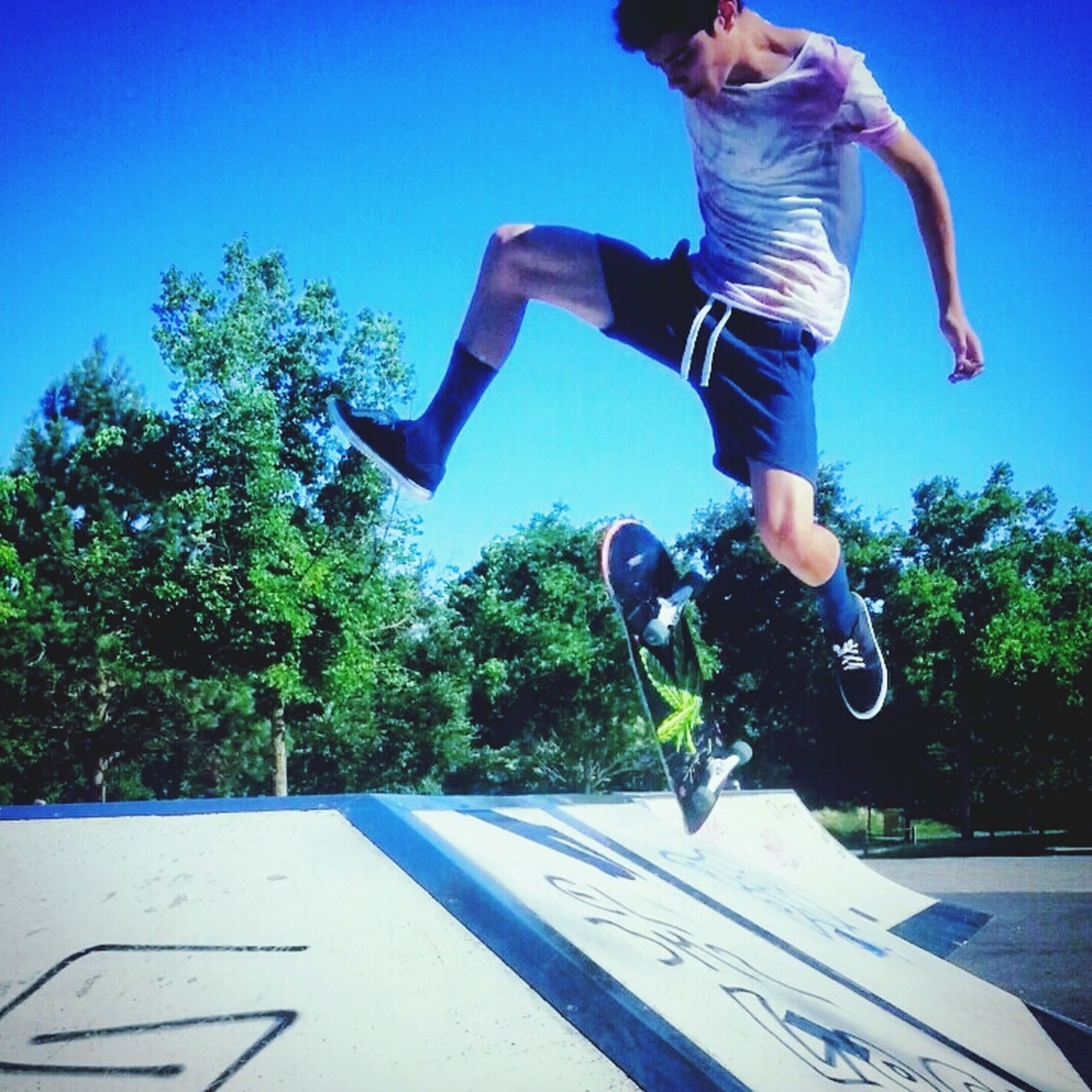 lifestyles, leisure activity, tree, full length, blue, casual clothing, mid-air, jumping, sunlight, clear sky, enjoyment, young adult, fun, skill, men, sport, skateboarding, young men
