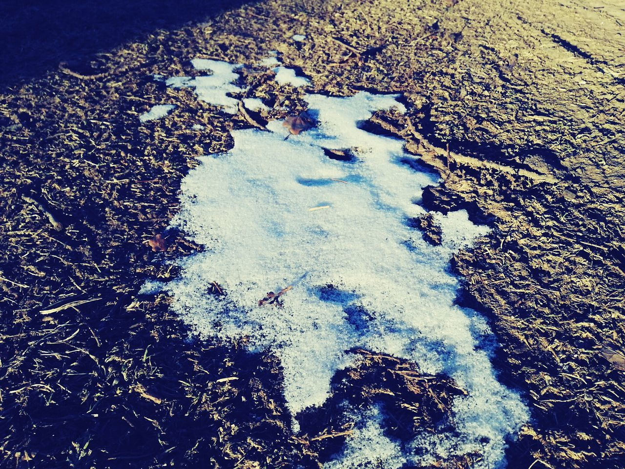 High Angle View Outdoors No People Nature Day Beach Close-up Paw Print Animal Track Mud Beuty Of Nature Beauty In Nature Frosty Morning Winter Grassfield Shiny Field Landscape Nature Reflection Earth Iceland