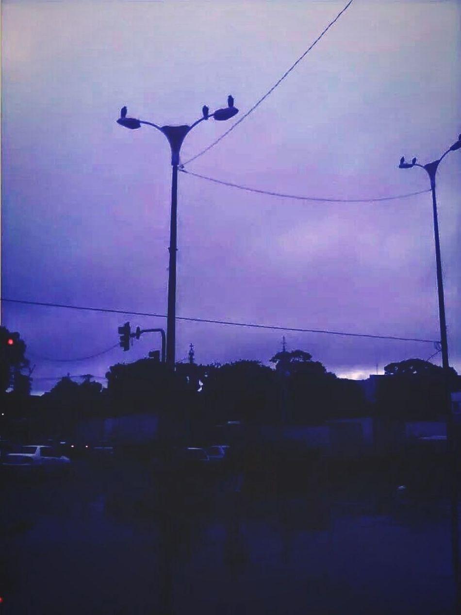 Depois da chuva Mobilephotography Mobgraphia Bestoftheday Thebestofeyeem Ver-o-peso Analog Landscape Landscape_Collection Landscape_photography