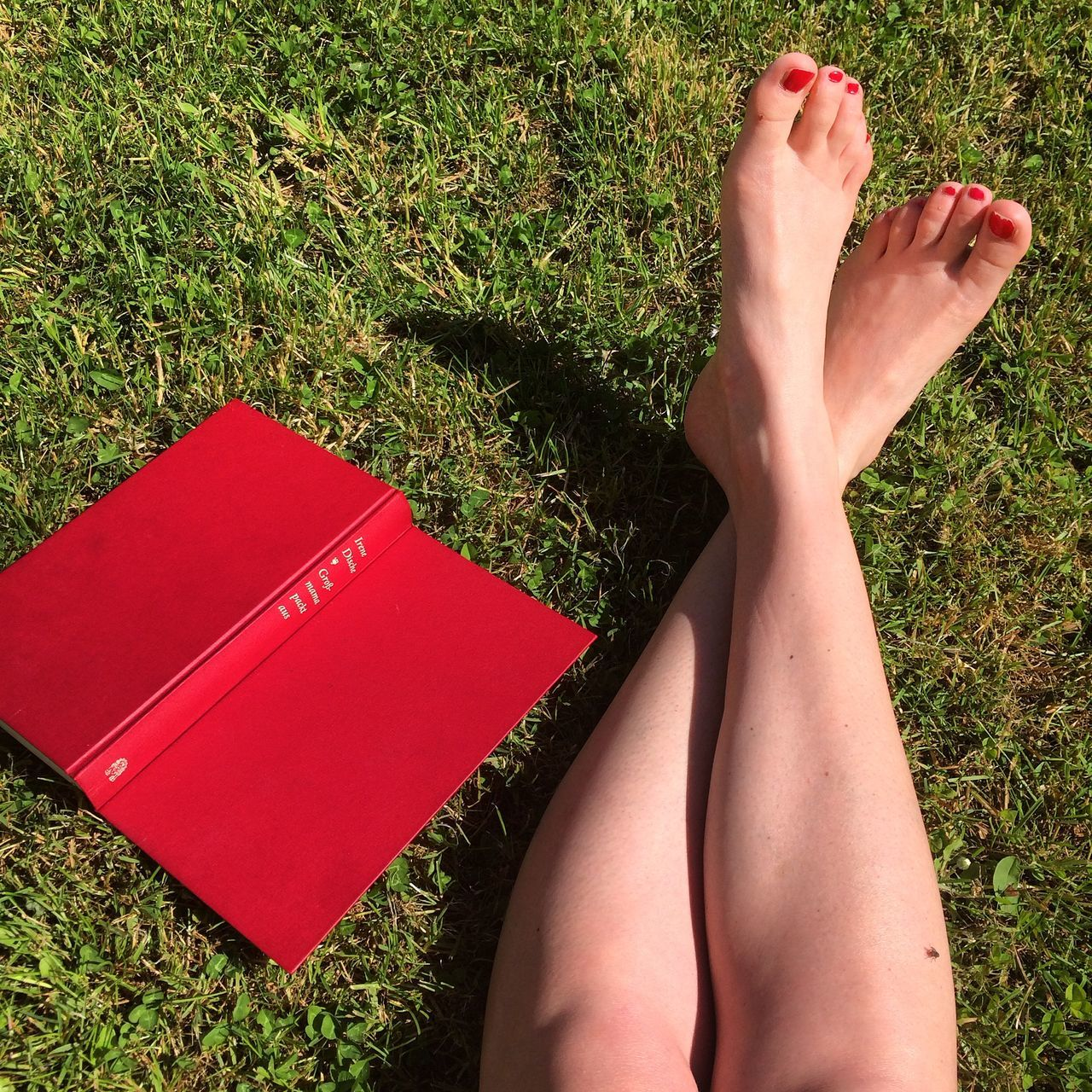 barefoot, low section, human leg, human foot, grass, human body part, red, real people, relaxation, one person, high angle view, day, women, leisure activity, outdoors, nature, close-up, adult, people
