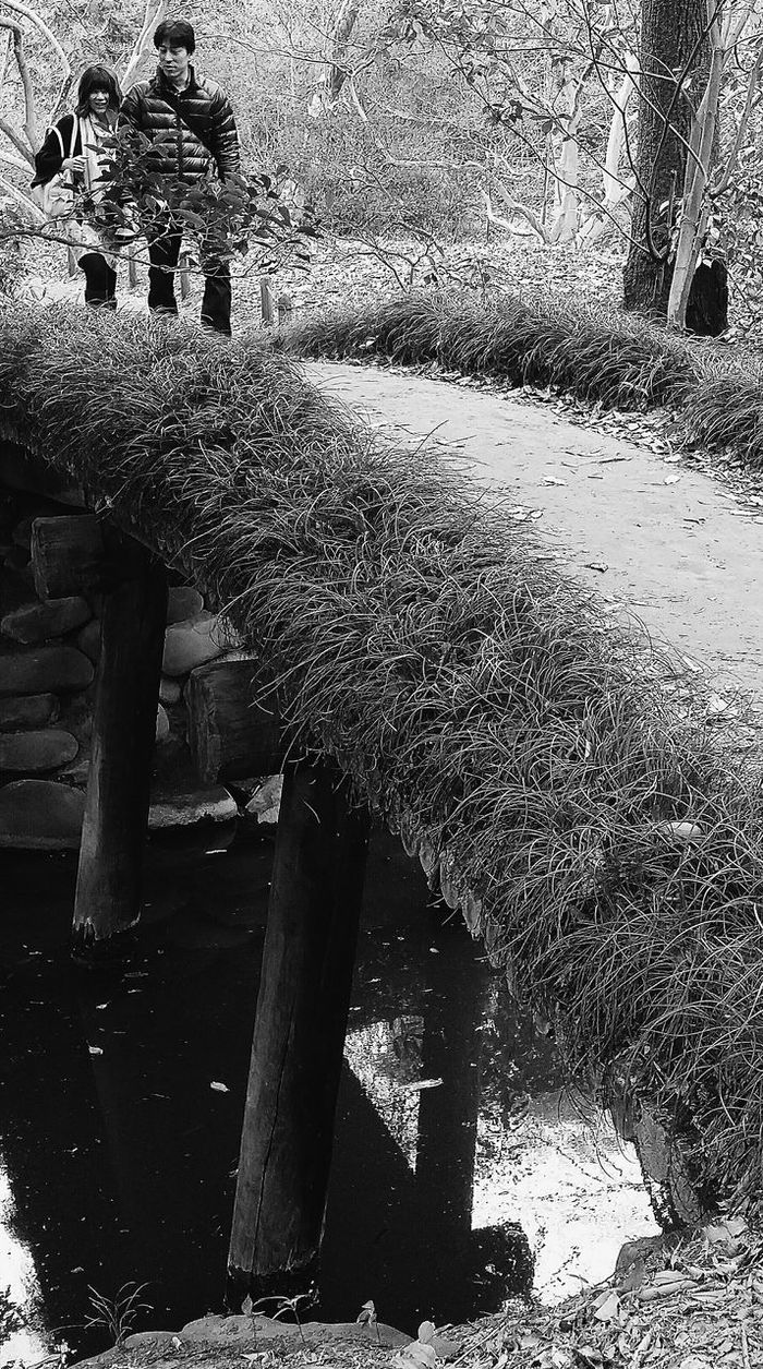 Bridge Streetphotography Rikugien Garden Rikugienspring2016 Edo Garden Tokyo Tokyospring2016 Japan Bnw_capture Bnw_globe Bnw_streetphotography Bnw_collection Eyeem Spring Eyeem Nature EyeEM Tokyo Eyeem Photography