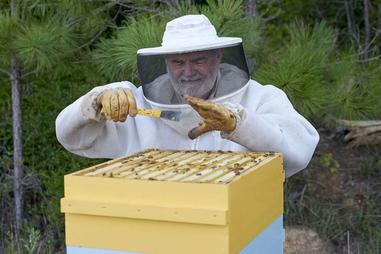The Butlers harvest some honey from their hives near Vernon, Alabama. Alabama Alabama Agriculture Bees Honey Bees  Honeycomb Natural Agriculture Photography Bee Hives Bee Keepers Bee Wax Honey Organic Organic Farm Organic Farming Organic Food Organic Living Southern Honey
