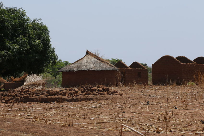 Mud houses in the north of Benin, close to Pendjari NP. African Benin Mud House Nature Nature Photography Tribal Africa Agriculture Architecture Building Exterior Built Structure Clear Sky Day Field House Landscape Nature Nature_collection Naturelovers No People Outdoors Rural Scene Scenics Sky Tree