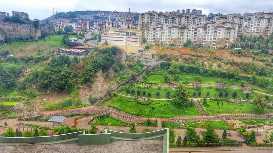 Green Color Park - Man Made Space Outdoors Nature Tree Beauty In Nature Natur Pur :)  No People Day Summer Nature_collection Leaves🌿 Nature Photography Green Leaves Forest Freshness Built Structure Architecture Green Grass Plant Trees Turkey Trabzon Traveling Home For The Holidays