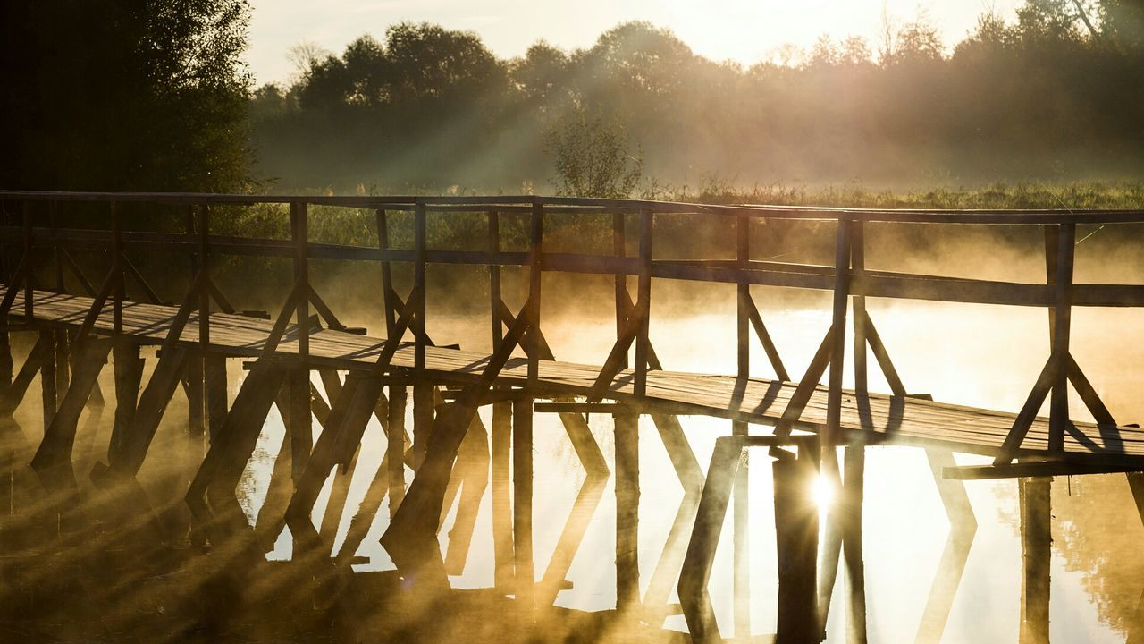 Morning Bridge Sunbeam Lens Flare Sunlight Back Lit Tranquil Scene Water Haze Summer Foggy Morning Fog Foggy Day Wood Spider Web Railing Sun Scenics Tranquility Day Sunbeam Connection Bridge - Man Made Structure Sunlight Tree