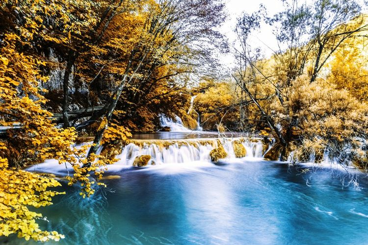 Plitvice National Park Croatia Tree Water Nature Beauty In Nature Scenics Outdoors No People Tranquil Scene Day Growth Waterfall Forest Sky Plitvice National Park Plitvice Lakes National Park Plitvice National Park Plitvice Lakes National Park Plitvickajezera P Croatia Waterfalls Autumn Colors The Great Outdoors - 2017 EyeEm Awards EyeEmNewHere Multi Colored Travel Travel Destinations Real People