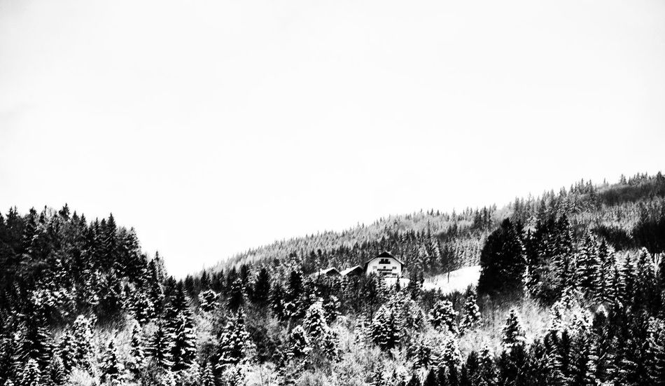 Can You Find The Hidden...? Farmhouse Winter Wonderland Monochrome Landscape The Minimals (less Edit Juxt Photography)