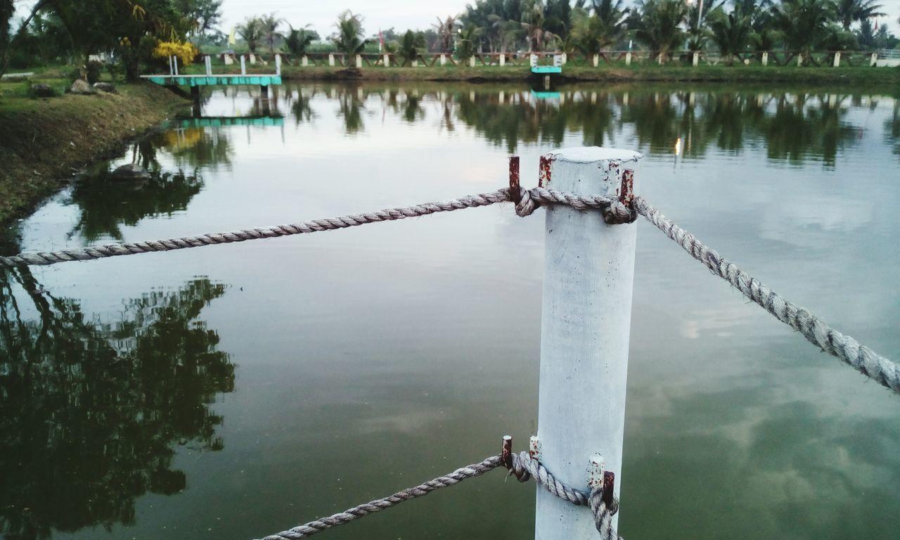 Pole Port Pier Swamp Pond