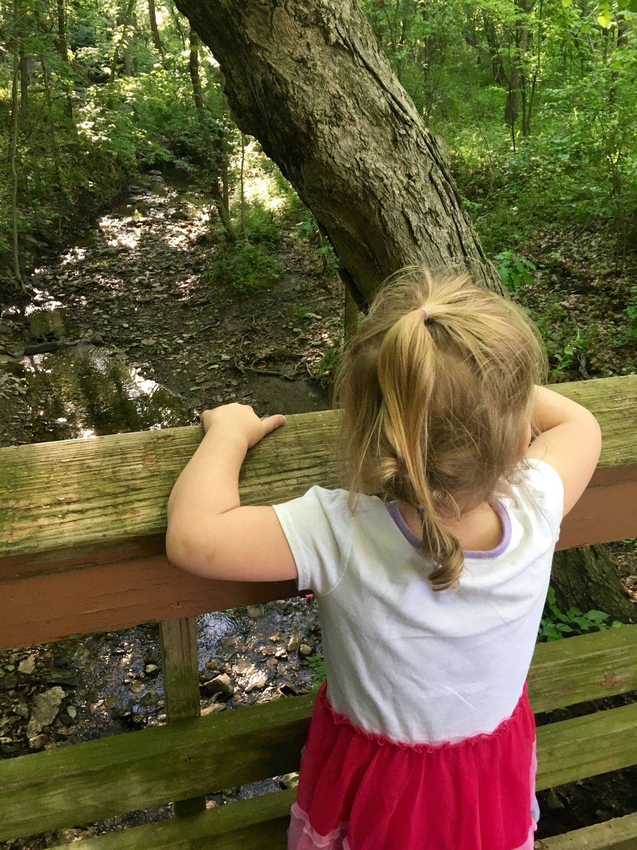 Creek Outside MapleWoods Water Sillygirl Gwenniegoose Bridge Toddlerlife Gwinning Gwennie Goose Green