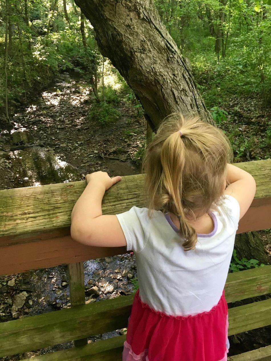 Creek Outside MapleWoods Water Sillygirl Gwenniegoose Bridge Toddlerlife Gwinning Gwennie Goose Green