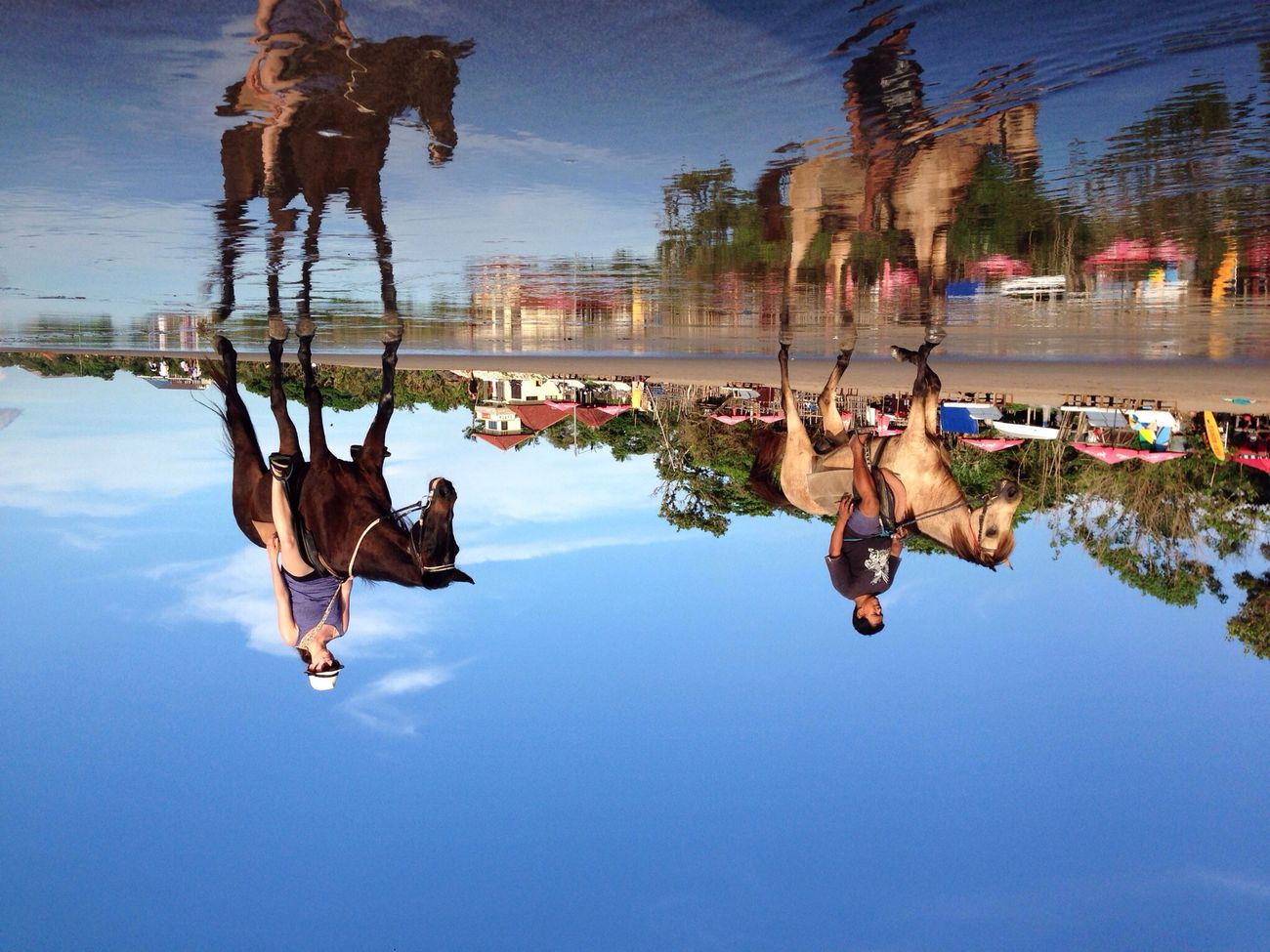 Upside down.... Reflection Mirror Upside Down