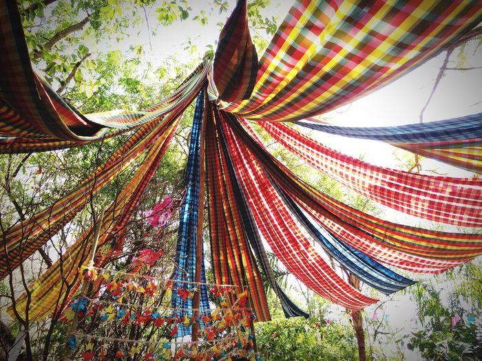 Art of Pha-khao-ma... ผ้าขาวม้า JimthomsonfarmLow Angle View Outdoors Multi Colored Day Tree No People Nature Close-up Sky