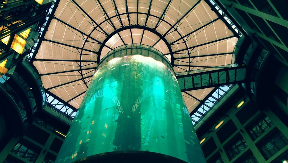 Discovering new places in Berlin! Discovering The Neighbourhood Aquarium Life