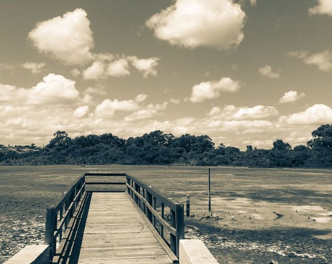 Drought at Market Garden Swamp Quiet Dried Up Lake Cumulus Clouds And Sky Dried Wetland Desolate Tranquil Scene Peaceful Place Outdoor Photography Wooden Bridge Spearwood Western Australia Dock Pier Jetty Trees Nature Reserve Conservation Dried Drought Market Garden Swamp Wetland Swamp