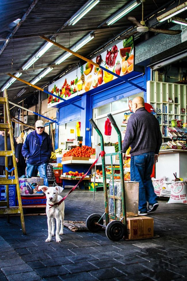 Hello :) Abundance Animal Arrangement Business Choice Collection Composition Display Dog For Sale Large Group Of Objects Lifestyles Market Market Stall Men Real People Retail  Store Street Photography Streetlife Streetphotography Togetherness Variation Wide Angle Women