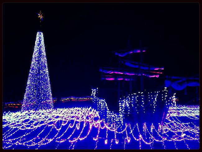 Pirate Ship Shining Tree Illumination Enjoying Life