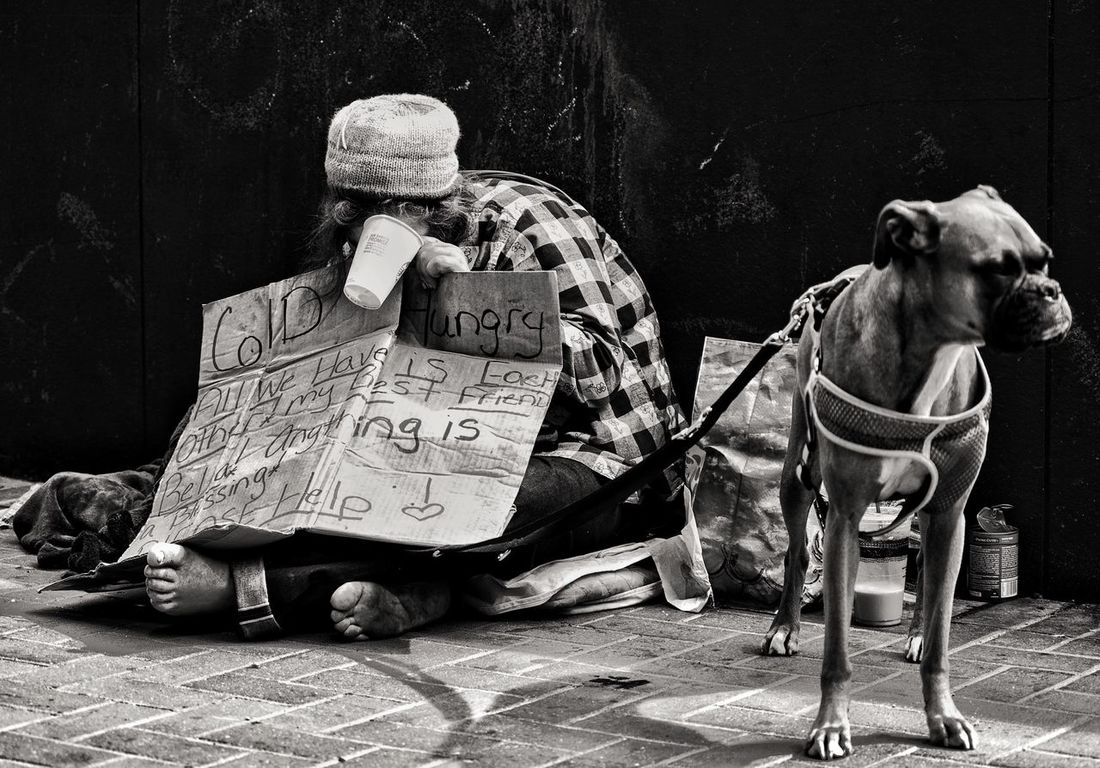 Cold and Hungry Dog No People Animal Themes Pets Mammal Domestic Animals Day Indoors  Close-up One Man Only Life In Motion Downtown District Blackandwhite Outdoors SocietyWantsToUseYou_NotHelpYou Society Welcome To Black The Street Photographer - 2017 EyeEm Awards